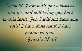 What Does The Bible Say About God Taking Care Of You Beauteous Promise Bible Verses