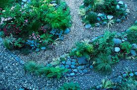 9 tips for rock garden design and
