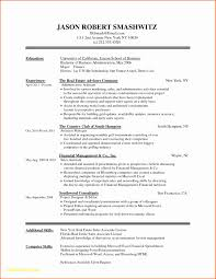 Software Engineer Resume Format For Experienced Lovely Software