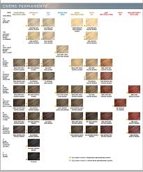 Clairol Hair Dye Color Chart Clairol Professional Creme Soy4plex Color Shade Chart In
