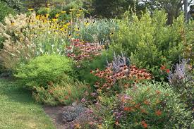 LowMaintenance Planting Design More Than Just Plant Selection Awesome Wildflower Garden Design Gallery