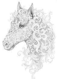 Small Picture Horse adult colouring page Colouring In Sheets Art Craft