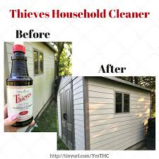 yl graphic thieves household cleaner shed