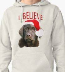 chocolate lab themed pullover hoo