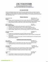 Resume Builder Template Free Online Book Of Free Line Resume