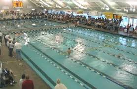 olympic swimming pool lanes. Size And Capacity. The Olympic Sized Pool Is 165 Feet Long By 56 Wide (8 Lap Lanes, Each 7 Wide). It Holds 490,000 Gallons (almost 1/2 Million Swimming Lanes S