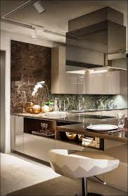 Full Size Of Kitchen Room:classic Contemporary Kitchen Design Ideas High End  Contemporary Kitchen Design ...