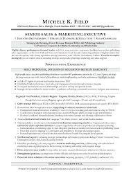 Resume Writing Companies Regional Sales Sample Executive Writer