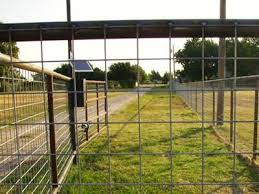 wire farm fence. The Welded Wire Cattle Fence Is Installed On Post In Farm. Farm