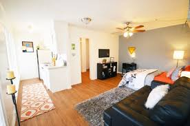 Austin 1 Bedroom Apartments