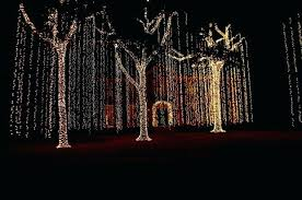 christmas tree lighting ideas. Outdoor Christmas Lights Ideas For Trees Action Part Light Tree Lighting I