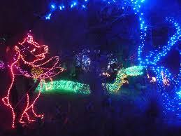 Christmas Snake Lights Bear And Snake Zoo Lights Bear Snake