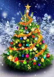 Kerstmis & Nieuwjaar | Lisas JDP
