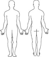 Human Body Diagram Outline Magdalene Project Org