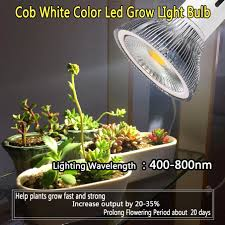 White Led Grow Light E27 7w 10w 15w 20w 24w Full Spectrum White Color
