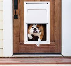 46 Unique Patio Door Pet Door Elegant Cat Door Lowes - Lemploi.net