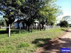 imagem de Formigueiro Rio Grande do Sul n-14