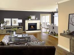 Living Room Accent Wall Colors Accent Wall Colors Living Room Home Wall Ideas Top Accent Wall