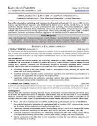 Free Resume Templates Ceo Resumes Award Winning Executive