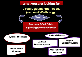 integrated mr ytical approach and