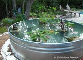 garden pond ideas. Delighful Garden Stock Tanks Can Be Used To Complete Many DIY Garden Projects Like This  Container Pond Click Here See The Tutorial To Garden Pond Ideas 2