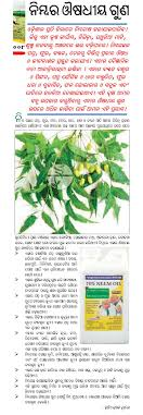 acirc medicinal plants medicinal plants chitta comments off on medicinal effects of neem samaja