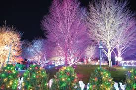 Winter Lights Returns To The Nc Arboretum The Laurel Of