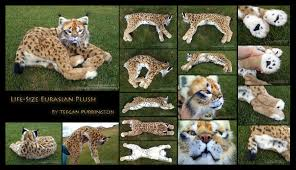 lynx size life size eurasian lynx plush detail by teeganpurrington on deviantart