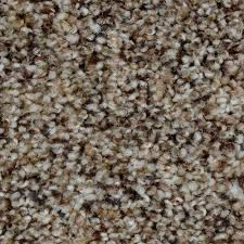 home decorators collection carpet sample grayson color medina