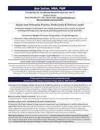 senior level enterprise practice productivity delivery leader ann sutton resume for website