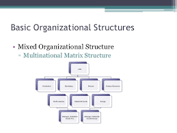 Organizational Chart Of Multinational Company Chapter 9