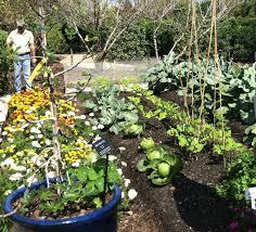 extension center garden