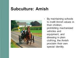 chapter characteristics of culture chapter preview what is  14 subculture amish by maintaining schools to instill amish values in their children prohibiting mechanized vehicles and equipment and dressing in plain