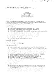 Advertising Account Executive Resume Extraordinary Account Manager Resume Objective Impressive Social Media