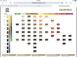 Ion Color Chart Pdf Image Result For Redken Color Fusion Hair Color Chart Cats