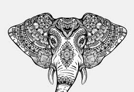 Disegni Animali Mandala Migliori Pagine Da Colorare
