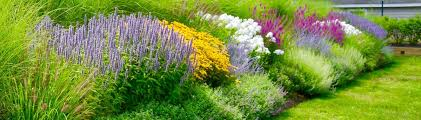 Garden Design And Landscaping Creative Awesome Decorating
