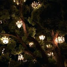 chandeliers in trees chandeliers swinging in the tree and lighting it up after a long day chandeliers in trees
