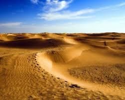 Пустыня Сахара в Африке животные растения карта Интересные  Конечно жить в условиях Сахары очень нелегко