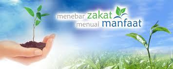 Image result for zakat pendapatan
