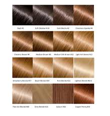Color Chart For Hair Color An Entire Hair Color Chart For Hair Extensions Glossie