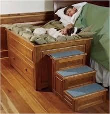 Manificent Design Dog Furniture Beds Exclusive Inspiration Best 25