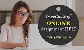online assignment writing help professional term paper  online assignment writing help