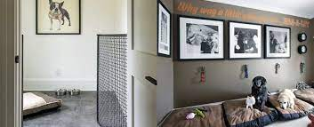 top 60 best dog room ideas canine