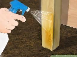 image titled spot termite damage step 7