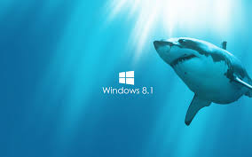official windows 8 wallpaper hd. Modren Windows Windows 81 Wallpaper Shark And Official 8 Hd I