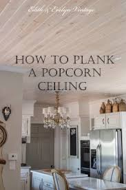 Kitchen Ceilings 17 Best Ideas About Painted Ceilings On Pinterest Paint Ceiling