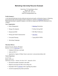 internship resume sample 4 - Objective In Resume For Internship