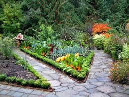 backyard vegetable garden house design with various plants and flowers plus stone floor tiles ideas