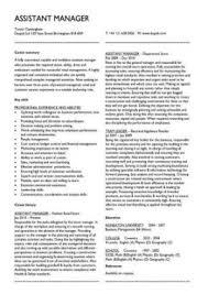 Management Cv Management Cv Template Managers Jobs Director Project
